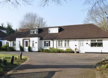 Thumbnail 4 bed detached bungalow for sale in Ermyn Way, Leatherhead
