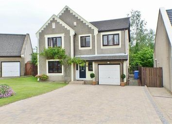 Thumbnail 4 bed detached house for sale in Dunlin, East Kilbride, Glasgow