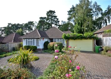 Thumbnail 3 bed bungalow for sale in Beech Ride, Sandhurst, Berkshire