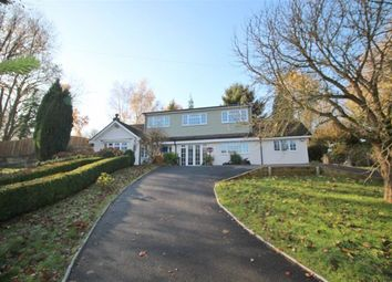 Thumbnail 6 bed detached house to rent in The Willows, Borough Green Road, Ightham, Sevenoaks