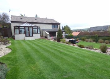 Thumbnail 4 bed detached house for sale in Millbank, Cupar, Fife