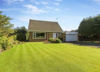 Thumbnail 3 bedroom bungalow for sale in Meadow Court, Ponteland, Newcastle Upon Tyne