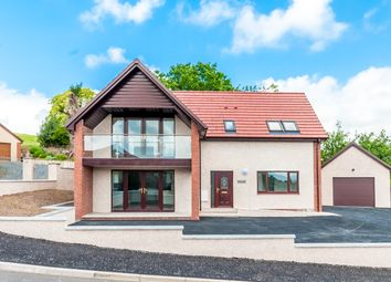 Thumbnail 3 bedroom detached house for sale in Muirs Way, Newton Stewart