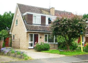 Thumbnail 3 bed semi-detached house to rent in Linden Way, Ripley