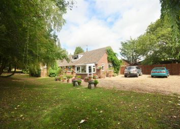 Thumbnail 4 bed detached bungalow for sale in Station Road, Semley, Shaftesbury