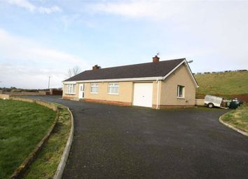 Thumbnail 3 bed detached bungalow for sale in Lisburn Road, Ballynahinch, Down.