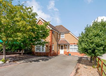 Thumbnail 4 bed detached house for sale in Cornflower Drive, Rugby