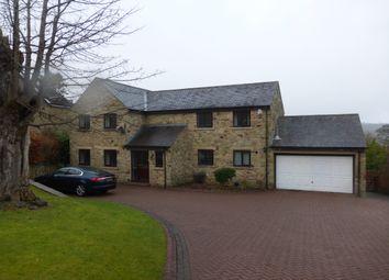 Thumbnail 4 bed detached house for sale in Peile Park, Shotley Bridge