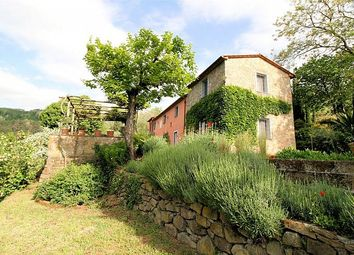 Thumbnail 4 bed property for sale in Country House, Colle Di Buggiano, Tuscany, Italy