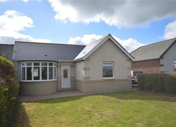 Thumbnail 2 bed bungalow to rent in Hillcrest, Burnhope, Durham
