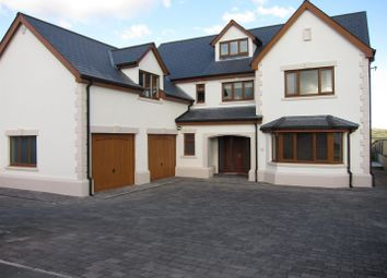Thumbnail 6 bed detached house for sale in Heol Hen, Five Roads, Llanelli