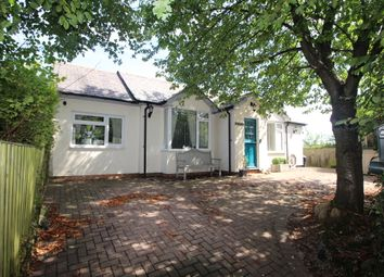 Thumbnail 4 bedroom bungalow for sale in Clay Hills, Pebmarsh, Halstead