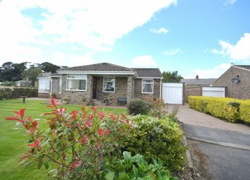 Thumbnail 3 bed bungalow for sale in Green Court, Esh, Durham