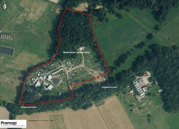 Thumbnail Commercial property for sale in Waterworks Spring Farm, Dagwood Lane, Doddinghurst, Brentwood, Essex