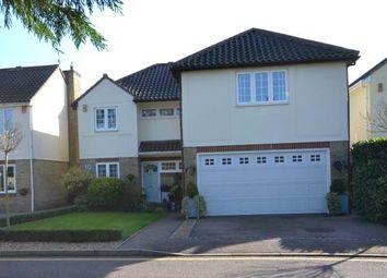 Thumbnail 5 bedroom detached house for sale in Shortcroft, Bishops Stortford