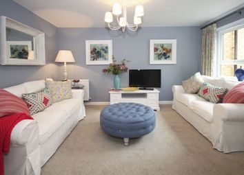 "Thumbnail 2 bed terraced house for sale in ""Newton"" at Hampton Dene Road, Hereford"