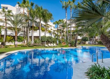 Thumbnail 2 bed apartment for sale in Aloha, Marbella Nueva Andalucia, Costa Del Sol
