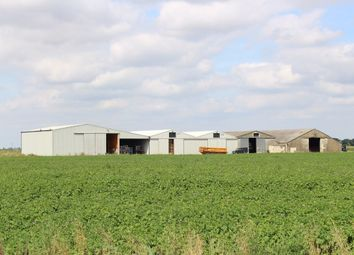 Thumbnail Land for sale in Redmere, Ely