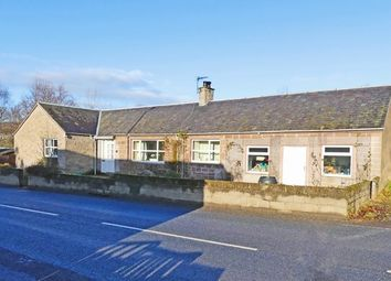Thumbnail 3 bed cottage for sale in Main Road, Spittalfield