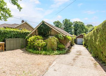 Thumbnail 3 bed detached bungalow for sale in Hillgrove Road, Northchapel, Petworth, West Sussex