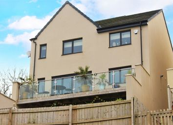 4 bed detached house for sale in Palm Tree View, Paignton TQ4