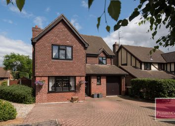 Thumbnail 4 bed detached house for sale in Shepherd Way, Taverham, Norwich