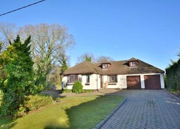 5 bed detached bungalow for sale in West Parley, Ferndown, Dorset BH22