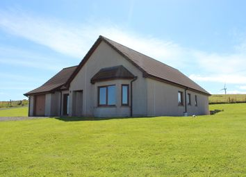 Thumbnail 4 bed detached bungalow for sale in Evie, Orkney