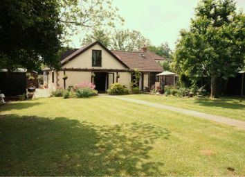 Thumbnail 5 bed detached bungalow for sale in Hyde Lane, Taunton