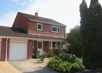 Thumbnail 3 bed semi-detached house for sale in Higher Actis, Glastonbury