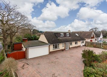 Thumbnail 5 bed detached bungalow for sale in Chestnut Avenue, Barton On Sea, New Milton