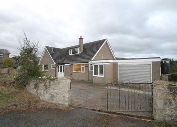 Thumbnail 4 bed detached house to rent in Lower Alport, Churchstoke