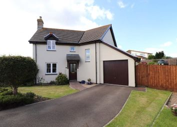 3 bed detached house for sale in Little Meadow, Pyworthy, Holsworthy EX22