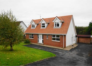 Thumbnail 3 bed detached house for sale in St Julians Brae, Omagh