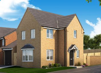 "Thumbnail 3 bedroom detached house for sale in ""The Mulberry"" at Manor Way, Peterlee"
