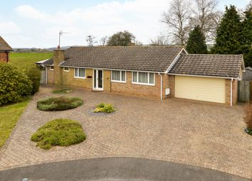 Thumbnail 3 bed bungalow for sale in Manor Leaze, Ashford