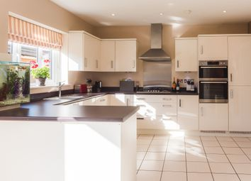 Thumbnail 4 bedroom detached house for sale in Hawthorn Close, Barleythorpe, Oakham