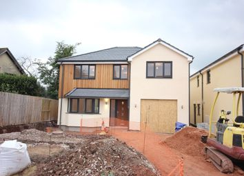 Thumbnail 5 bedroom detached house for sale in Clampitt Road, Ipplepen, Newton Abbot