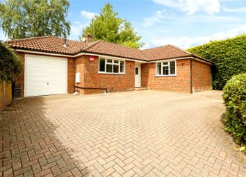 3 bed bungalow for sale in Chappell Close, Liphook, Hampshire GU30
