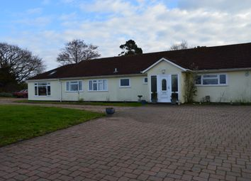 Thumbnail 1 bed detached bungalow to rent in Mount Pleasant, Hundon