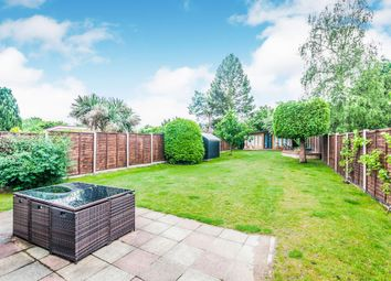 Thumbnail 3 bed bungalow to rent in Birdwood Road, Maidenhead