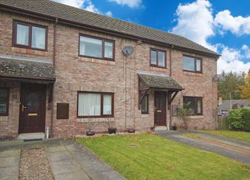 Thumbnail 3 bed terraced house for sale in Charlton View, Bellingham, Hexham
