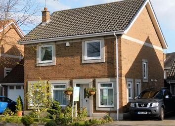Thumbnail 4 bedroom detached house for sale in South Bridge Road, Victoria Dock, Hull