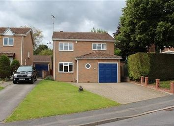 Thumbnail 4 bed detached house to rent in Longedge Rise, Wingerworth, Chesterfield