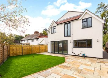 Thumbnail 4 bed detached house for sale in School Road, Windlesham, Surrey