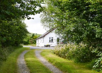 Thumbnail Land for sale in Woodford Green Farm, Ty Mawr, Llanybydder, Carmarthenshire.