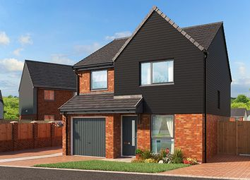 "Thumbnail 3 bed property for sale in ""The Fir At Bucknall Grange, Stoke-On-Trent"" at Little Eaves Lane, Stoke-On-Trent"
