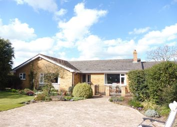 Thumbnail 3 bed detached bungalow for sale in Back Lane, Mattishall, Dereham