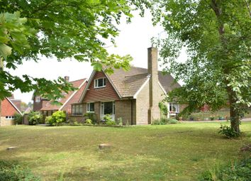 Thumbnail 4 bed detached house for sale in Treadwell Road, Epsom