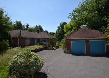Thumbnail 3 bed bungalow to rent in Whitedown Lane, Alton